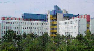 Case Study Siemens